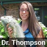Dr. Thompson
