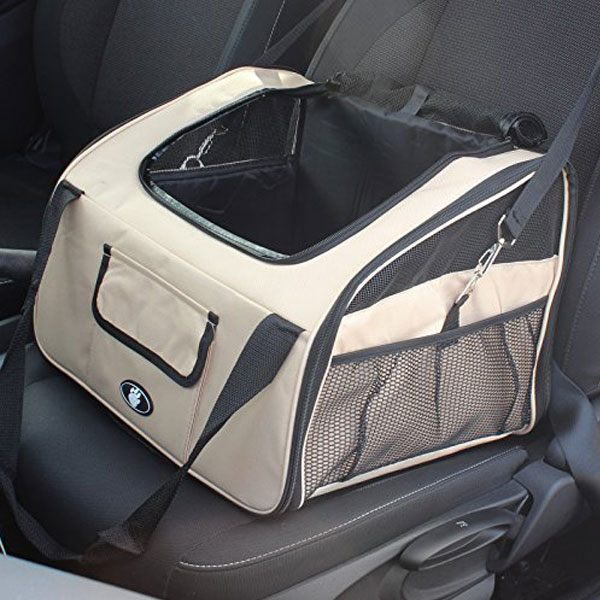 bag in the car